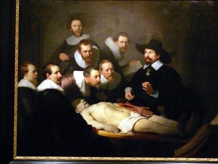 clase anatomia